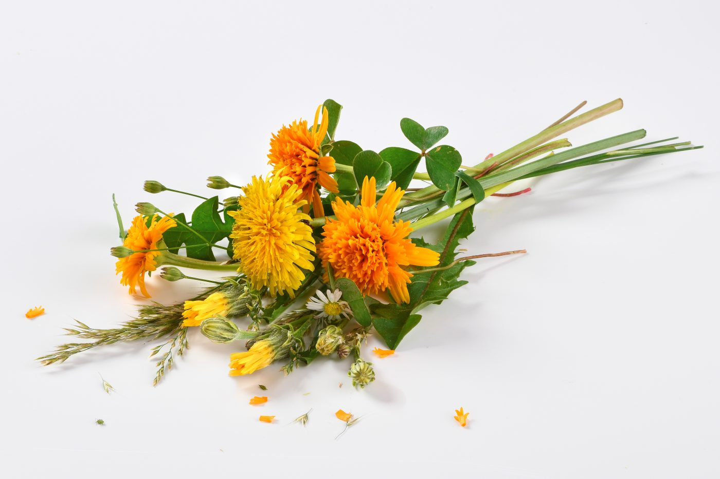 a bunch of orange meadow flowers for cheese production are lying on a white background